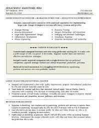 functional executive functional executive resume resume template info