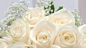 bouquet preservation wedding bouquet preservation essex florist greenhouses inc