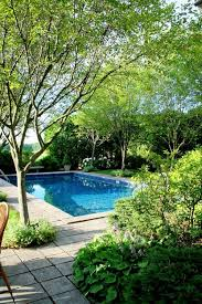 40 best cool pools images on backyard ideas pool
