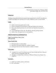 basic home health aide resume template
