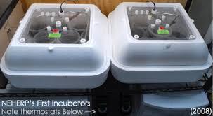 neherp diy incubator how to