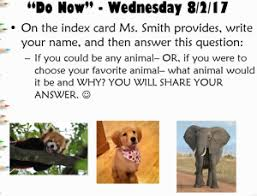 if you could be any animal uncategorized if you think reading is boring you u0027re doing it