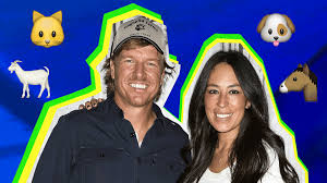 Chip Gaines Farm 18 Things To Know About Chip And Joanna Gaines U0027 Pets The Gaines U0027 Farm