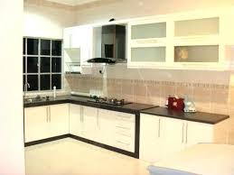 pvc kitchen cabinets pros and cons pvc kitchen cabinets medium size of kitchen cabinets review china