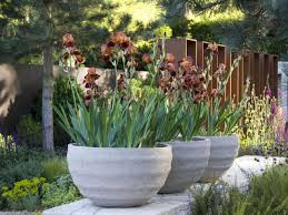 modern planters and pots pots in gardens or yards hgtv
