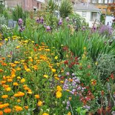 Types Of Garden Flowers - enchanting flower garden ideas creative tecniques for enchanting