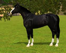 equus sims view topic wolf hill paints new studs
