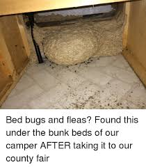 Bed Bug Meme - 釤 bed bugs and fleas found this under the bunk beds of our