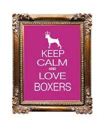 boxer dog sayings boxer dog running gotta love boxers pinterest dogs boxer