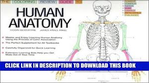 Human Anatomy Images Free Download Read Kindle The Coloring Review Guide To Human Anatomy Free