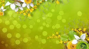 green and yellow flowers flowers u0026 nature background wallpapers