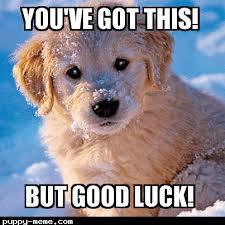 Good Luck Memes - luck