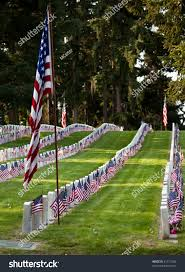 Us Military Flags Us Military Cemetery Flying Us Flags Stock Photo 81417928