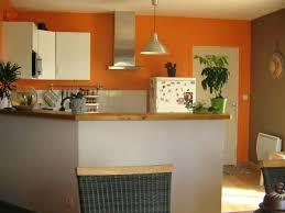 couleur tendance cuisine peinture de cuisine cuisine photo 5 5 peinture for deco peinture
