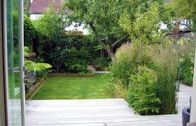 garden ideas small trees for lawn and decing in north london