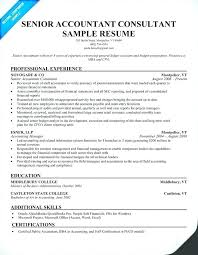 Accountant Resume Template by Accountant Resume Shalomhouse Us