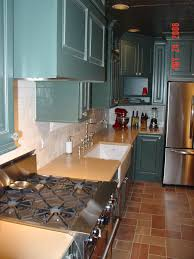 Kitchen Cabinet Forum Modern Kitchen Blue Cabinets Cold Feet Help Kitchens Forum