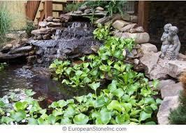 Build Backyard Pond 38 Best New Koi Pond Ideas Images On Pinterest Pond Ideas