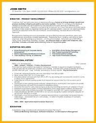 executive director resume board of director resume sle nonprofit executive director