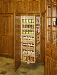 Kitchen Pantry Cabinets by Pull Out Pantry Cabinets For Kitchen Riccar Us