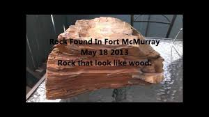 whats in this rock how old may 18 2013 rock looks like wood