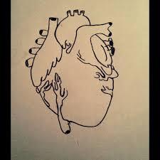human heart drawing by kittykat126 on deviantart