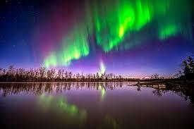 northern lights columbus ohio night light landscape lighting new best christmas light displays in