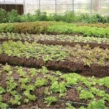 farmtek hydroponic fodder systems farming u0026 growing supplies