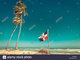 Dominican Republic Flag Sandy Beach Palm Tree And Dominican Republic Flag Stock Photo