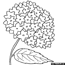 flower coloring pages color flowers 1