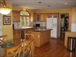 White Kitchen Cabinet Paint by Kitchen Grey And White Kitchen Cabinets White Kitchen Floor
