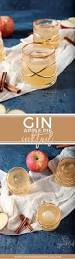 183 best easy party cocktails u0026 drink recipe ideas images on