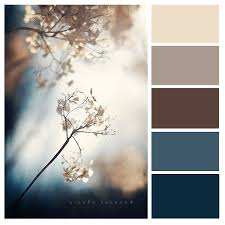 Best English Colour Combination For Living Room by Best 25 Colour Schemes Ideas On Pinterest Room Color Schemes