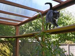 Diy Patio Enclosure Kits by Best 25 Pet Enclosures Ideas On Pinterest Outdoor Cat Enclosure