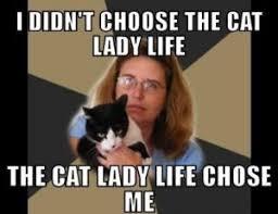 Meme Crazy - crazy lady meme cat lady meme