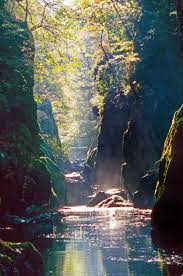 30 best brooks and streams images on pinterest beautiful places