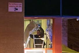 Hit The Floor Quebec - what u0027student u0027 gunman who stormed quebec mosque told cops as he