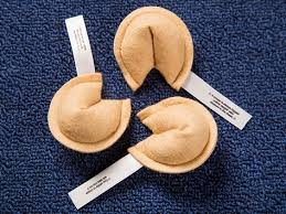 fortune cookies for sale in bulk fortune cookie cat set the grommet