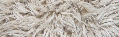 long shag rug concentric carpet residential