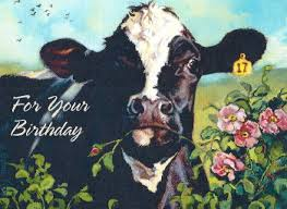 Cow Birthday Card Cows Cards Cow Gifts Cow Christmas Cards Cow Stickers