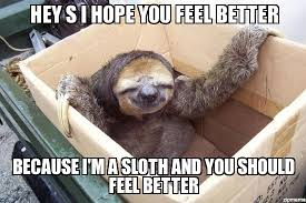 Feel Better Meme - gusta sloth hey s i hope you feel better because i m a sloth and