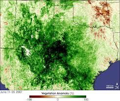 Texas vegetaion images Nasa visible earth texas greenup jpg