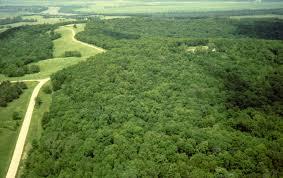 Kansas forest images Fort leavenworth kansas jpg