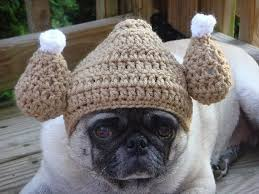 thanksgiving offerings around south florida miami food pug