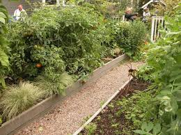 Small Backyard Vegetable Garden by 25 Best Garden Images On Pinterest Deer Fence Gardening And