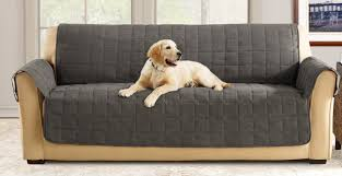 Box Cushion Pads Sure Fit Box Cushion Sofa Slipcover U0026 Reviews Wayfair