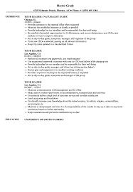 resume template accounting australian embassy bangkok map pdf tour leader resume sles velvet jobs