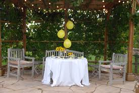 bumble bee party ideas a complete plan what could be more precious
