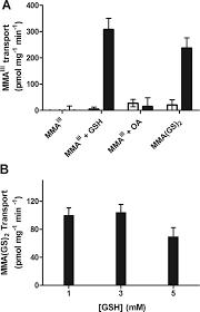 monomethylarsenic diglutathione transport by the human multidrug