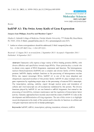 PDF hnRNP A1 The Swiss Army Knife of gene expression